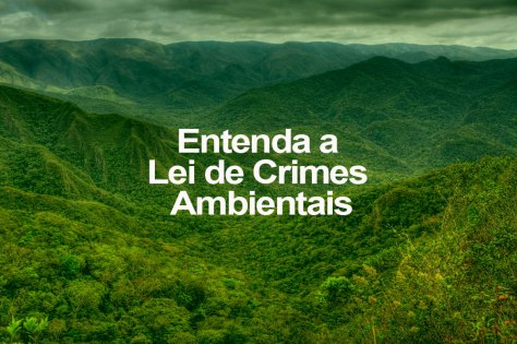 entenda-a-lei-de-crimes-ambientais
